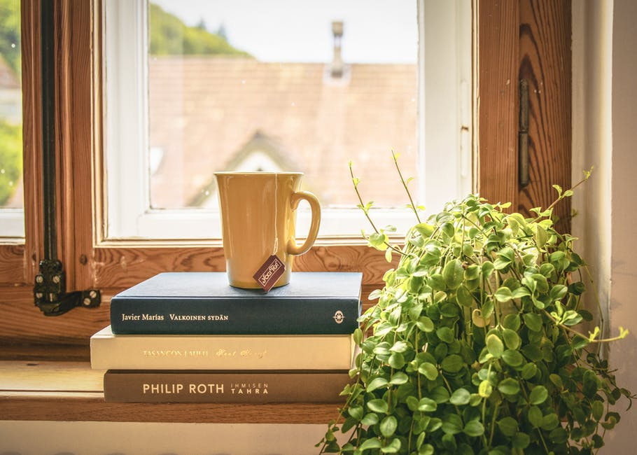 An image showing an indoor house plant next to books and a mug of tea on a windowsill